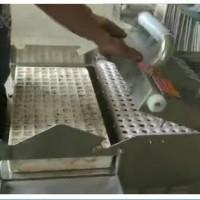 泡沫穴播种机  辣椒茄子漂盘育苗播种机--常州风雷精机