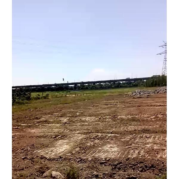 荒漠植草造林养护施工工程