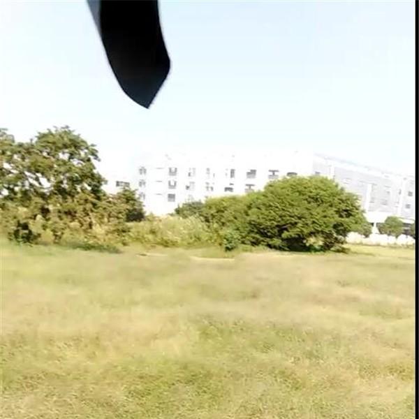 市政绿化植草养护施工工程