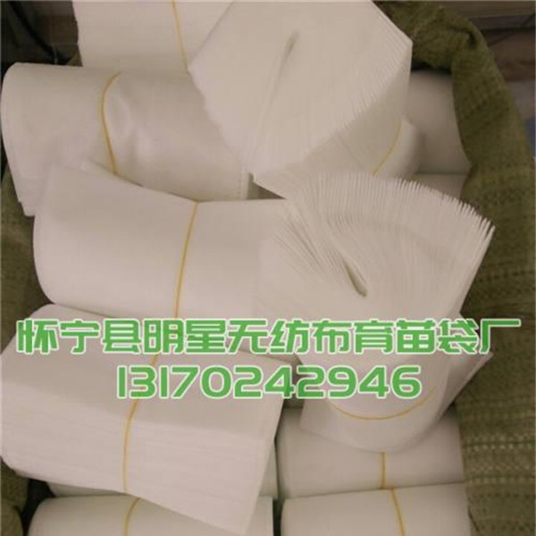 育苗无纺布袋批发价格 育苗无纺布袋生产厂家