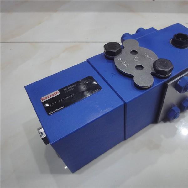 DBW10B1-5X/100S6EG24N9K4R12