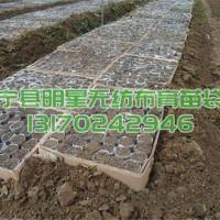 轻基质网袋批发价格 轻基质网袋生产厂家