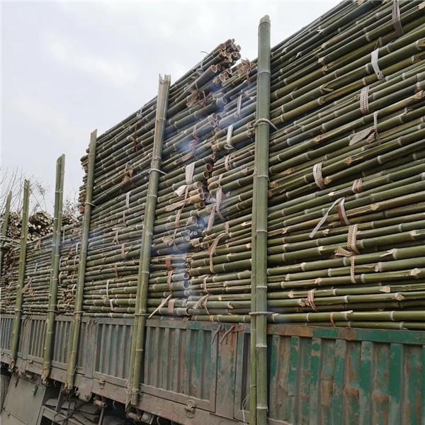 綠化支撐竹桿批發價格 綠化支撐竹桿供應廠家