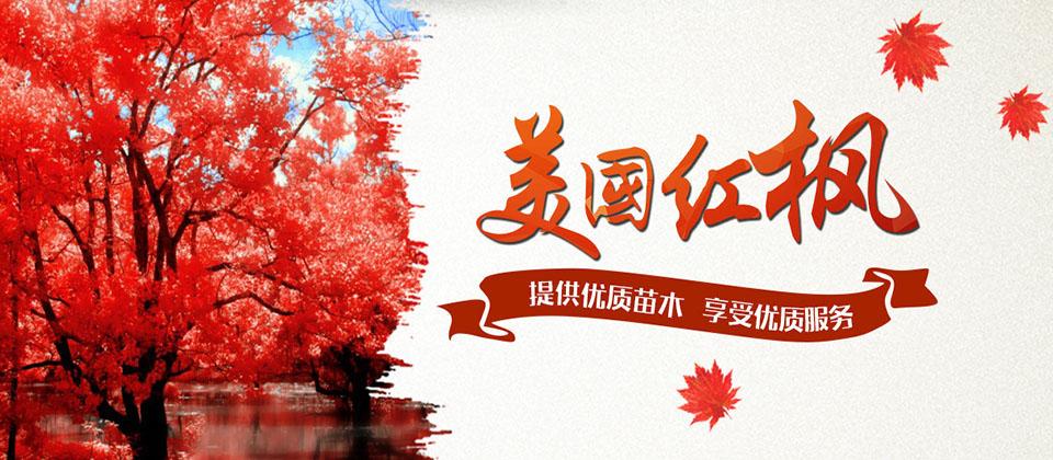 郯城县红冠苗木有限公司