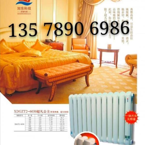 钢二柱暖气片 5025 钢二柱散热器价格 6030