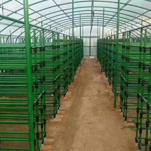 龙井包塑料蔬菜大棚棉被厂家
