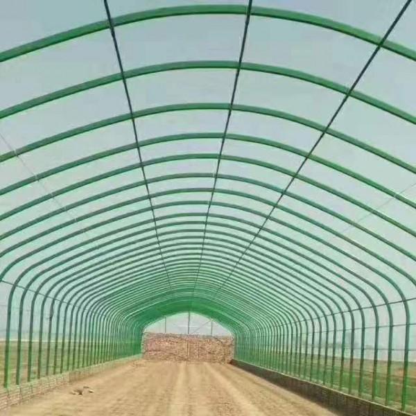 慈溪带保温后墙养殖大棚设计生产一条龙