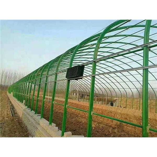 天津养殖大棚管加工厂家 天津蔬菜大棚管供应价格