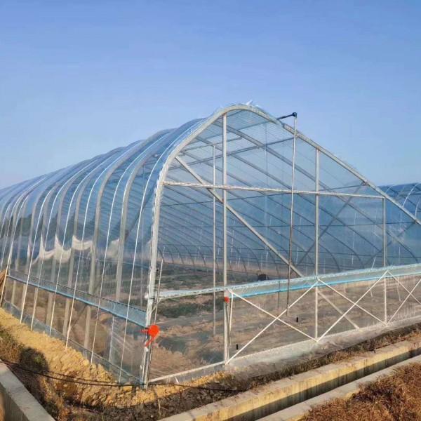 平湖冬季蔬菜组装钢管大棚厂家