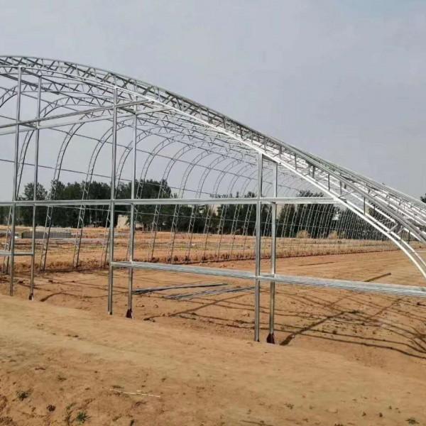 遼源保溫養雞組裝鋼管大棚廠家