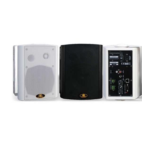 瑞皇网络终端音箱2×20壁挂喇叭商场学校ip网络广播系统专用