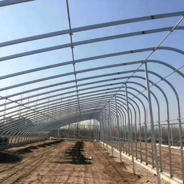 阳泉养猪包塑钢管组装大棚厂家