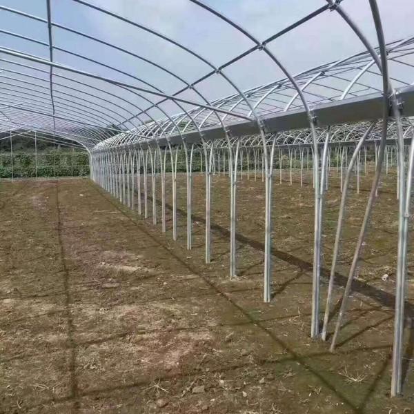 平湖養雞大棚養殖溫室設計發貨