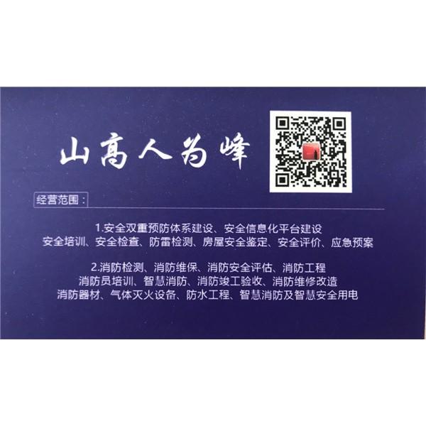 企業安全技術咨詢服務