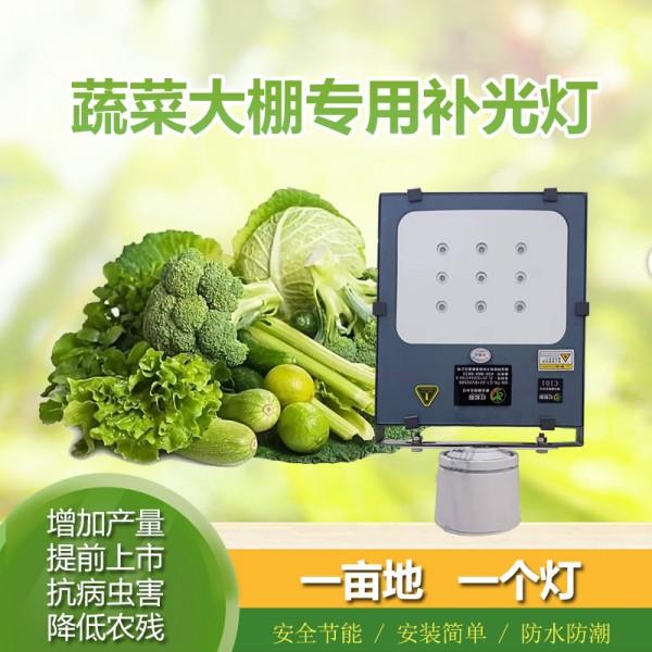 蔬菜大棚专用补光灯厂家 大棚补光灯价格