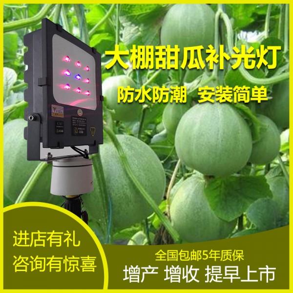大棚甜瓜专用补光灯价格 植物补光灯厂家